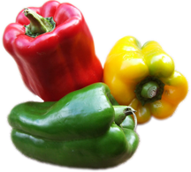 """Bright red beauty of peppers gives Italian dishes their character"""